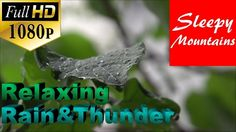 Relaxing Rain And Thunder | To Fall Asleep To | Relieve Stress | Meditat...