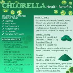 Chlorella may be one of the most powerful foods in the world recognized for its superfood status. Click through to discover why it is so incredibly healthy, how to use it, and recommended doses! Article by Dr. David Jockers DC, MS, CSCS. Please re-pin to share with your friends! // The Truth About Cancer