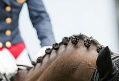 All braided up and ready to show. Horse