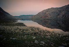 Гренландия: арктический туристический рай #лайфхаки #технологии #вдохновение #приложения #рецепты #видео #спорт #стиль_жизни #лайфстайл