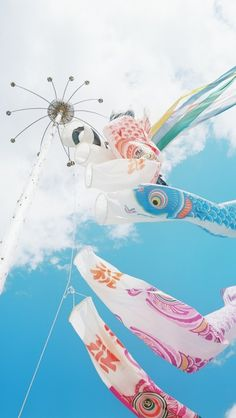 """Koinobori, meaning """"carp streamer"""" in Japanese, are carp-shaped wind socks traditionally flown in Japan to celebrate Tango no Sekku (端午の節句?), a traditional calendrical event which is now designated a national holiday; Aesthetic Japan, Blue Aesthetic, Carpe Coi, Koi, Pokemon, Cute Asian Fashion, Child Day, Pics Art, Japan Travel"""
