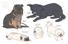 Simmer In This! — hamotzi:   some of the dogs from old friends...