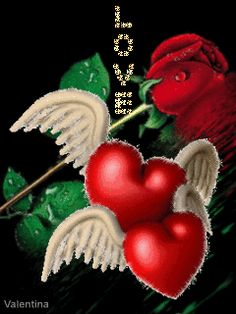 32949-shining-red-hearts-wings.gif (240×320)