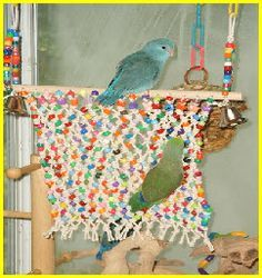 Pet Bird DIY Ideas... make a beaded net for your beloved birdie to climb on and tear up!