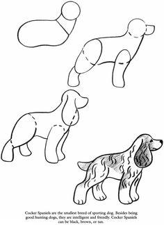How to draw a Cocker Spaniel
