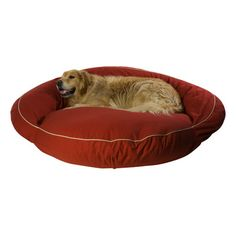 Zoey Tails Twyla Pet Bed & Reviews   Wayfair