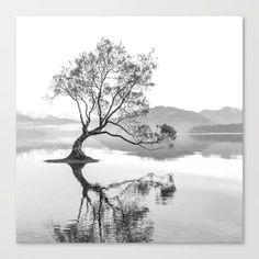 Wanaka Tree New Zealand Nature Photograph Black And White Canvas Print by infinitely | Society6 Black And White Posters, Black And White Canvas, White Art, White Wood, Small Canvas Prints, Wall Prints, Canvas Wall Art, Poster Prints, Tree Canvas