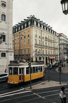 Lisbon Canziani