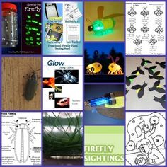 Learn and craft about fireflies!  Tons of freebies for pre-k through high school: crafts, lapbook items, worksheets, mini-books, lesson plans, facts, coloring pages, songs, recommended books, even a 48 page teacher guide on bioluminescence.  :)