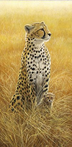 Alert Cheetah and Cub, by UK Wildlife Artist Jeremy Paul