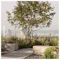 Sky Garden, Garden Trees, Rooftop Terrace Design, Rooftop Gardens, Landscape Design, Garden Design, Garden Architecture, Sustainable Architecture, Environment Design
