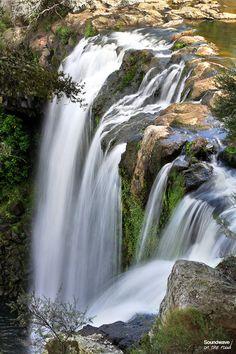 Cascade Rainbow Falls, Kerikeri, Nouvelle Zélande http://soundwaveontheroad.com/roadtrip-dans-le-northland-en-nouvelle-zelande-nos-immanquables/