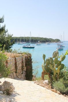 Palmizana, Sveti Klement island, near Hvar, Croatia. Tiny bohemian island hotel in the Adriatic Sea. i-escape.com