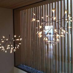 lichtERLEBNIS Flur ... Die besondere, dem Bärenklau nachempfundene, wunderschöne Pendellleuchte Heracleum von Moooi setzt diesen Treppenaufgang wirkungsvoll in Szene. Die beweglichen Blätter lassen durch ihre variable Ausrichtung das Licht immer wieder anders erscheinen.  #moooi #lichtFACTOR #licht #Beleuchtung #lichtPLANUNG #LED #Lampe #Hängelampe #Pendelleuchte #Feldkirch #Vorarlberg Feldkirch, Led Lampe, Chandelier, Ceiling Lights, Lighting, Home Decor, Light Fixtures, Scene, Nice Asses