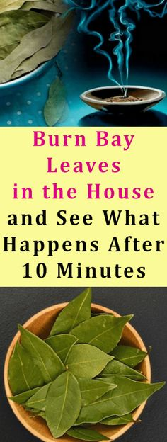Burn Bay Leaves in the House and See What Happens After 10 Minutes #burn #home #beauty #health #fitness #diy