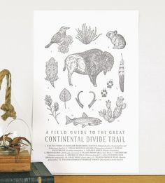 Continental Divide Trail Field Guide Letterpress Art Print by The Wild Wander on Scoutmob