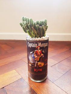 Cactus in Unique and Quirky Handcut Captain Morgan RumBottle Planter by CrazyPlantLady84 on Etsy Captain Morgan Rum, Rum Bottle, Succulent Gifts, Types Of Plants, Cacti And Succulents, Fathers Day Gifts, House Warming, Upcycle, Cactus