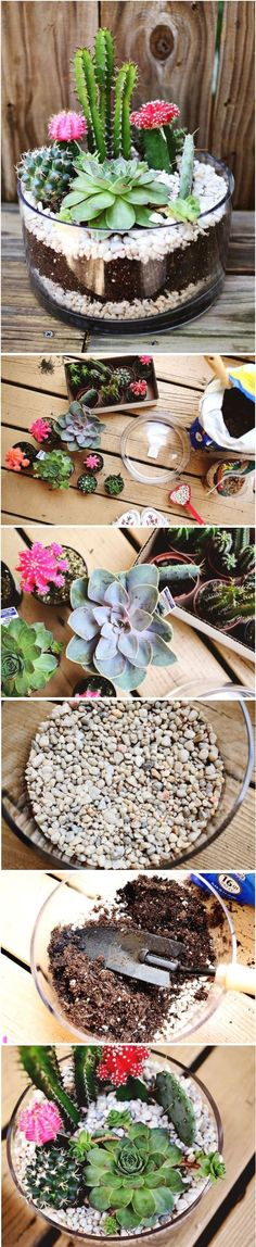 DIY terrarium! This super cute and easy to make terrarium looks ultra stylish with cactus and succulents