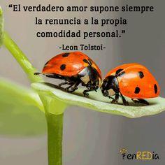 """""""El verdadero amor supone siempre la renuncia a la propia comodidad personal.""""…"""