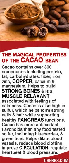 Cacao contains over 300 compounds including protein, fiber, iron, zinc, copper, calcium & magnesium. Helps to build strong bones & is a muscle relaxant associated with feelings of calmness. Cacao is also high in sulfur, which helps form strong nails & hair while supporting healthy pancreas functions. Cacao has more antioxidant flavonoids than any food tested so far. Helps dilate blood vessels, reduce blood clotting, improve circulation, regulate heartbeat & blood pressure. #dherbs #hea...