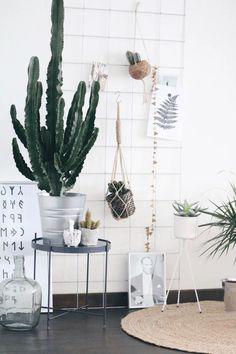 Ben jij net zo'n plantengek als wij en zijn jouw plantenpotten allemaal al gevuld? Of wil je gewoon eens wat anders dan een standaard pot of vaas? Er zijn nog zoveel meer leuke en creatieve alternatieven om je plant gezellig neer te zetten in huis! En vaak met spullen die je toch al in huis hebt. Wij laten je vijf opties zien. Doe er je voordeel mee! Tumbler Room Decor, Interior Inspiration, Room Inspiration, Interior Styling, Interior Design, Studio Living, New Room, Home Decor Accessories, Sweet Home