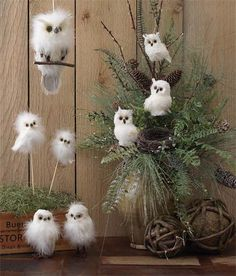 For some reason, owls remind me of fall. Floral arrangement using White Owls on a Stick, Branch with Bird Nest and more White Owls from the Forest Frost Collection Christmas Owls, Rustic Christmas, Christmas Projects, Christmas Holidays, Christmas Wreaths, Christmas Ornaments, White Christmas, Christmas Flower Arrangements, Christmas Centerpieces