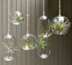hanging_bubbles