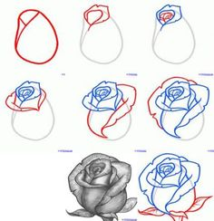 Exquisite Learn To Draw A Realistic Rose Ideas. Creative Learn To Draw A Realistic Rose Ideas. Realistic Flower Drawing, Simple Flower Drawing, Easy Flower Drawings, Flower Drawing Tutorials, Pencil Art Drawings, Art Drawings Sketches, Tattoo Sketches, Easy Drawings, Tattoo Drawings