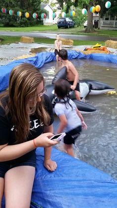 Fun in the hay bale pool