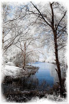 beautiful winter stream