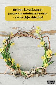 Kukkiva kevätkranssi on hurmaava ilmestys ulko-ovessa tai sisällä seinällä. Katso videolta, miten helposti kranssi syntyy ja miten sen saa säilymään upeana, vaikka kukat kuihtuvatkin! #meilläkotona #meilläkotonafi #pääsiäinen #pääsiäisaskartelu #pääsiäiskranssi #pääsiäiskoristeet #kranssi #kevätkranssi #kranssiluonnonmateriaaleista Wreaths, Diy, Door Wreaths, Bricolage, Do It Yourself, Deco Mesh Wreaths, Floral Arrangements, Homemade, Garlands