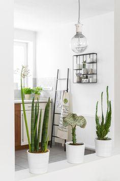interior - Einrichtung - deko -dekoration -decoration - minimal ... | {Küchendekoration 29}
