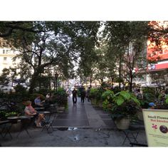 Herald Square, new York city... My fave little tiny park in the middle of the hustle and bustle of herald square... Used to eat lunch at the tiny cafe and watch passerby & smoke cigs..... Oh I miss it