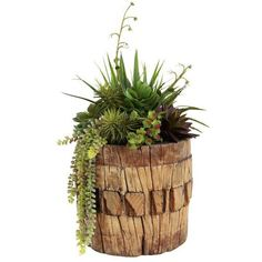 Old Wood Axel with Faux Succulents ($676) ❤ liked on Polyvore featuring home, home decor, floral decor, models & figurines, wooden figure, wooden figurines, wood home decor, axel and artificial arrangement