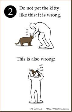 Thread: Why do cats purr? Why do cats? - Catsincare.com