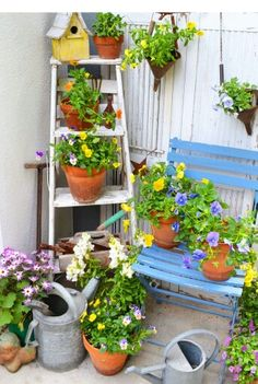 Cool ladder  plant stand