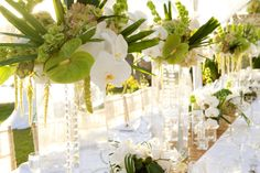 Centerpieces   White Orchid Wedding