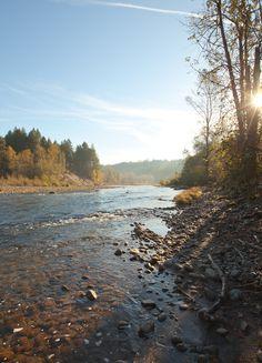 River Swimming in Oregon