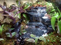 sweet waterfall ... has building in progress for future reference