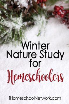 Winter Nature Study for Homeschoolers
