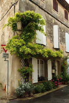 ♔ Saint-Rémy de Provence
