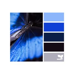 Design Seeds ❤ liked on Polyvore featuring design seeds, backgrounds, color palettes, colors and colour