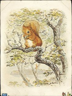 Nutkin the Squirrel  by Beatrix Potter