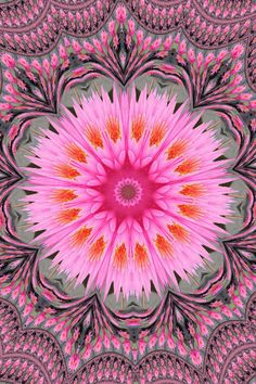 Fractal Kaleidoscope --- Marionna - flower for holiday by Lyudmila