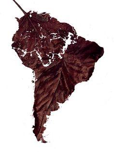 child labour. chocolate africa