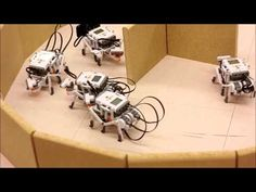 New First Year Robotics Course in School of Computer Science - YouTube