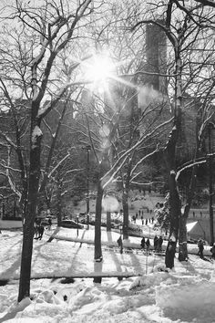 Beautiful black and white photos of central park in New York City.