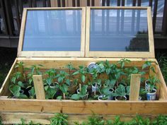 Add four weeks to the front of the growing season by using cold frames to start your garden.