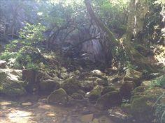 Dupnisa cave kirklareli Turkey