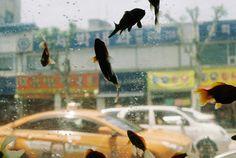 Fine Art Street Photography by Kooyong Sohn #inspiration #photography